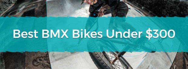 Best BMX Bikes Under $300